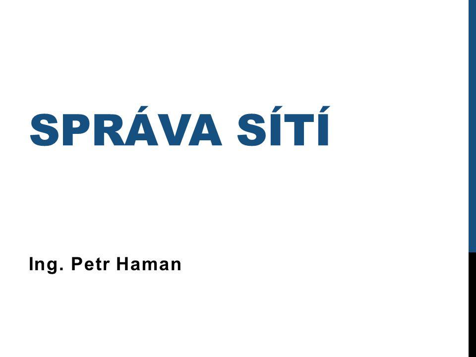 SPRÁVA SÍTÍ Ing. Petr Haman