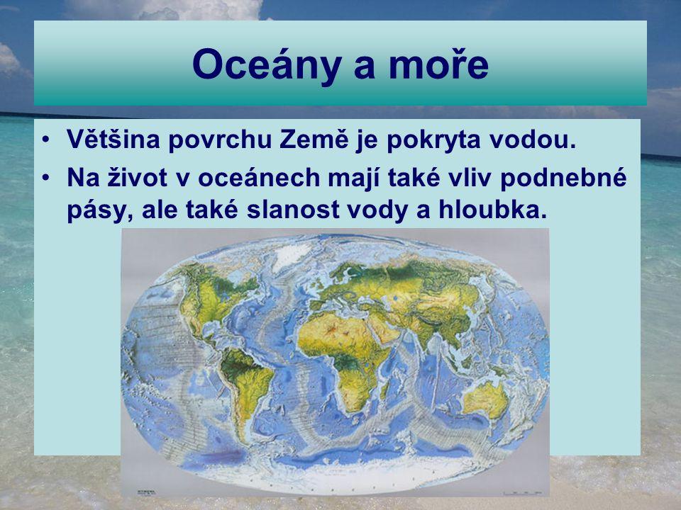 Oceány a moře Většina povrchu Země je pokryta vodou. Na život v oceánech mají také vliv podnebné pásy, ale také slanost vody a hloubka.