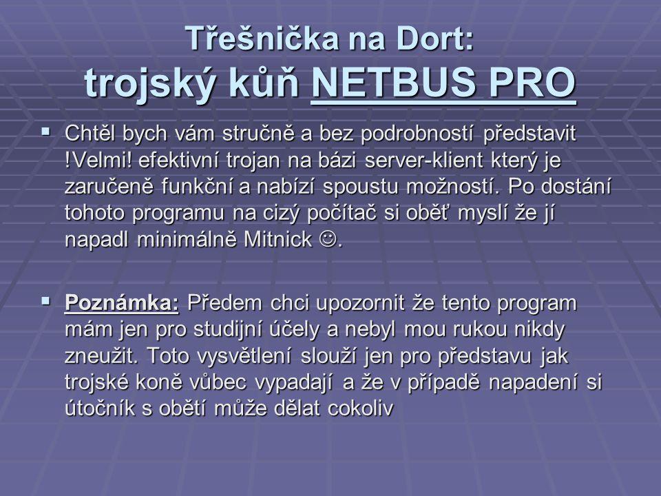 Třešnička na Dort: trojský kůň NETBUS PRO  Chtěl bych vám stručně a bez podrobností představit !Velmi.