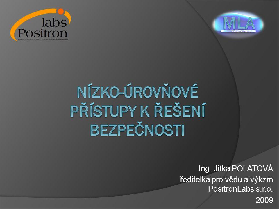 Ing. Jitka POLATOVÁ ředitelka pro vědu a výkzm PositronLabs s.r.o. 2009 Multi Level Architecture