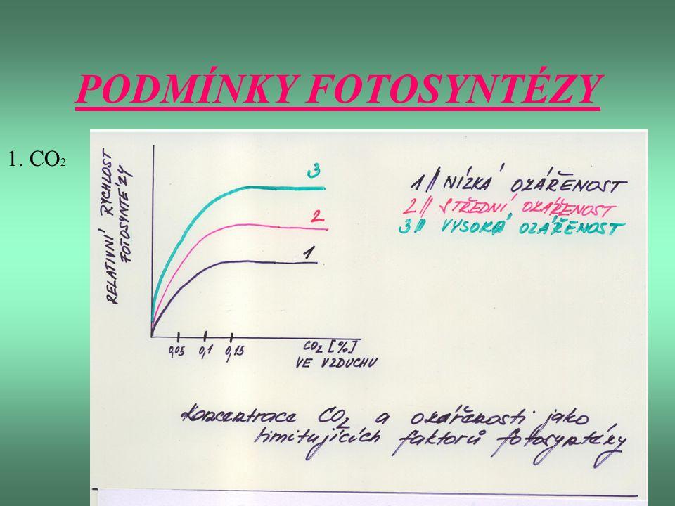 PODMÍNKY FOTOSYNTÉZY 1. CO 2