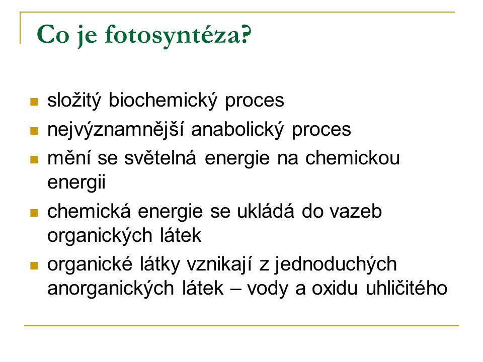 Co je fotosyntéza? složitý biochemický proces nejvýznamnější anabolický proces mění se světelná energie na chemickou energii chemická energie se uklád