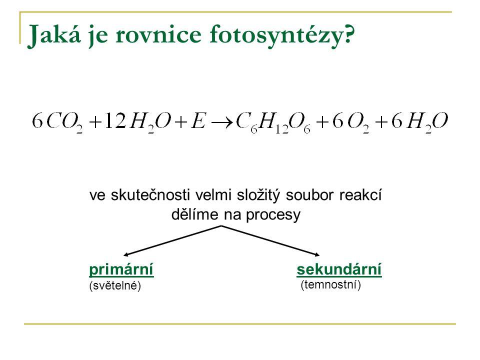 Jaká je rovnice fotosyntézy? ve skutečnosti velmi složitý soubor reakcí dělíme na procesy primárnísekundární (světelné) (temnostní)