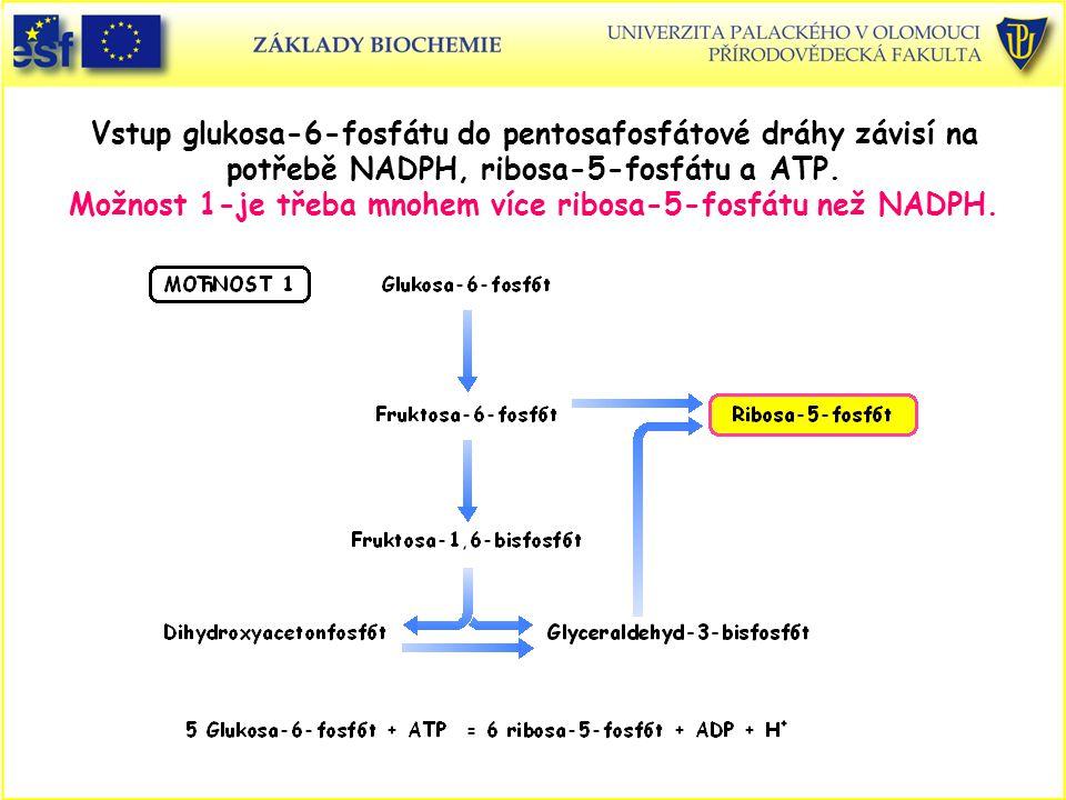 Vstup glukosa-6-fosfátu do pentosafosfátové dráhy závisí na potřebě NADPH, ribosa-5-fosfátu a ATP. Možnost 1-je třeba mnohem více ribosa-5-fosfátu než