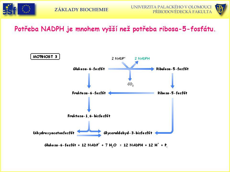 Potřeba NADPH je mnohem vyšší než potřeba ribosa-5-fosfátu.