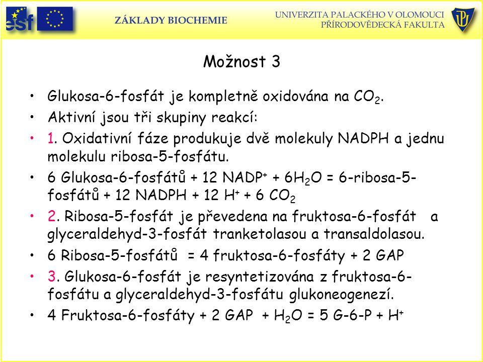 Možnost 3 Glukosa-6-fosfát je kompletně oxidována na CO 2. Aktivní jsou tři skupiny reakcí: 1. Oxidativní fáze produkuje dvě molekuly NADPH a jednu mo