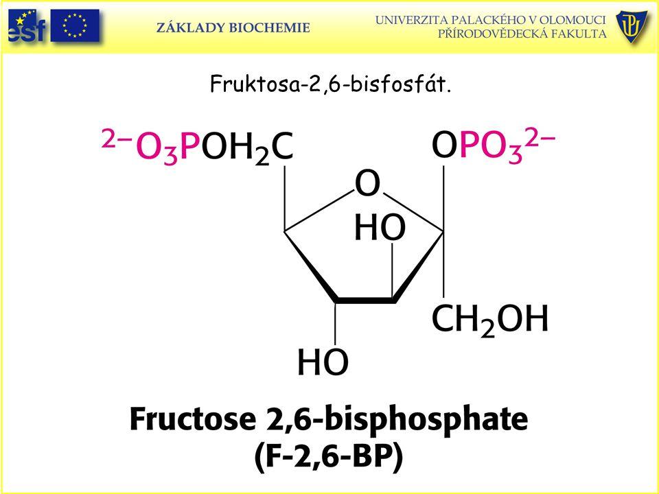 Fruktosa-2,6-bisfosfát.
