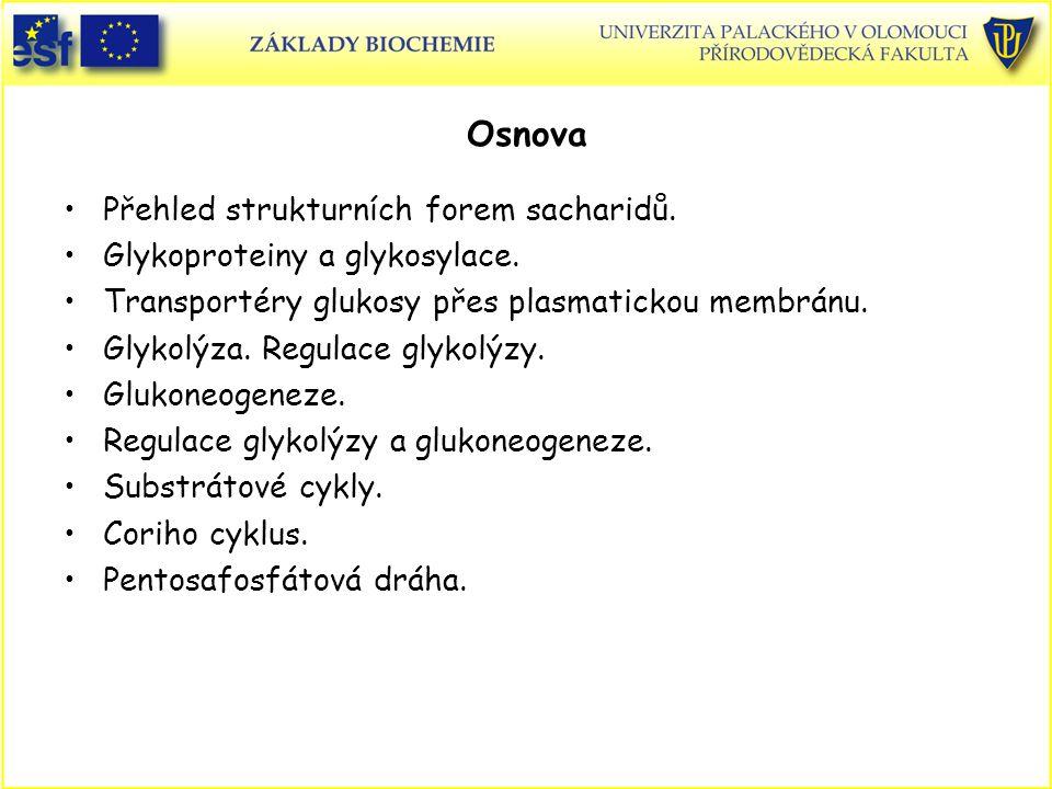 Osnova Přehled strukturních forem sacharidů. Glykoproteiny a glykosylace. Transportéry glukosy přes plasmatickou membránu. Glykolýza. Regulace glykolý