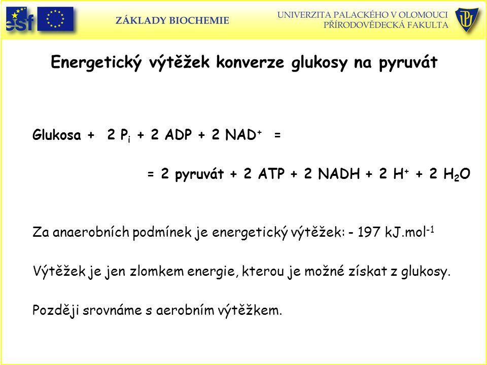 Energetický výtěžek konverze glukosy na pyruvát Glukosa + 2 P i + 2 ADP + 2 NAD + = = 2 pyruvát + 2 ATP + 2 NADH + 2 H + + 2 H 2 O Za anaerobních podm