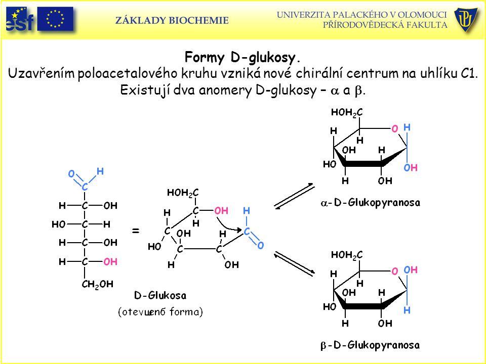 Formy D-glukosy. Uzavřením poloacetalového kruhu vzniká nové chirální centrum na uhlíku C1. Existují dva anomery D-glukosy –  a .