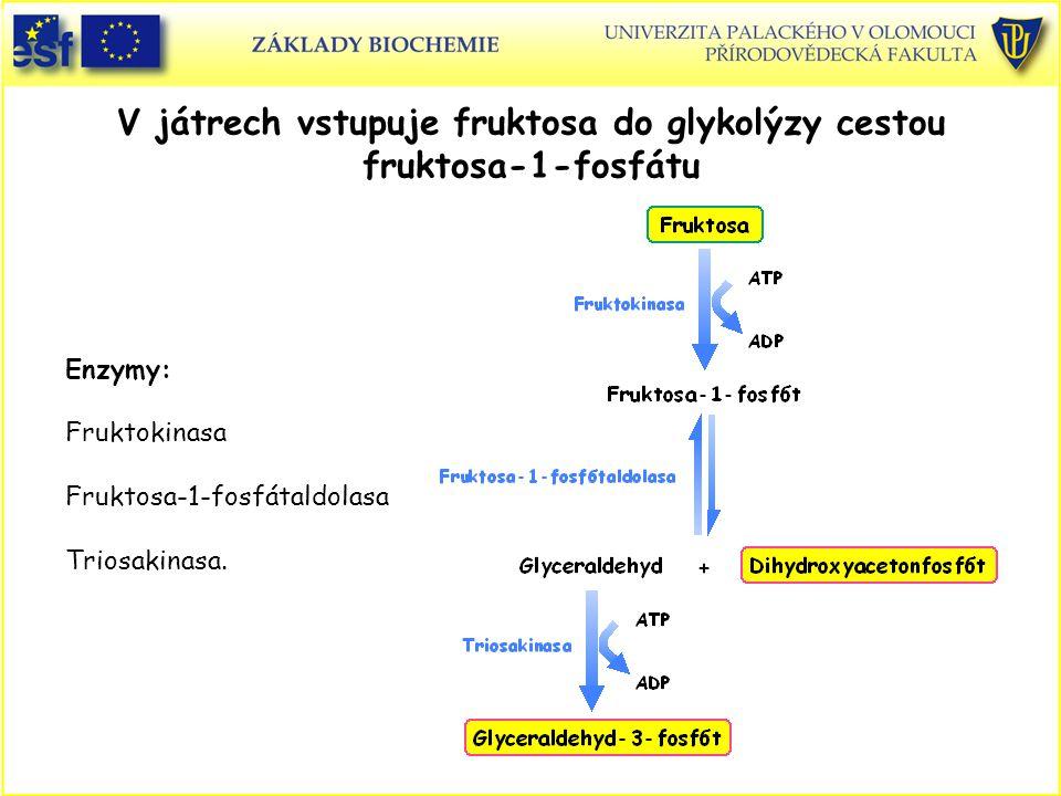 V játrech vstupuje fruktosa do glykolýzy cestou fruktosa-1-fosfátu Enzymy: Fruktokinasa Fruktosa-1-fosfátaldolasa Triosakinasa.
