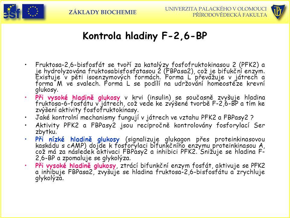 Kontrola hladiny F-2,6-BP Fruktosa-2,6-bisfosfát se tvoří za katalýzy fosfofruktokinasou 2 (PFK2) a je hydrolyzována fruktosabisfosfatasou 2 (FBPasa2)