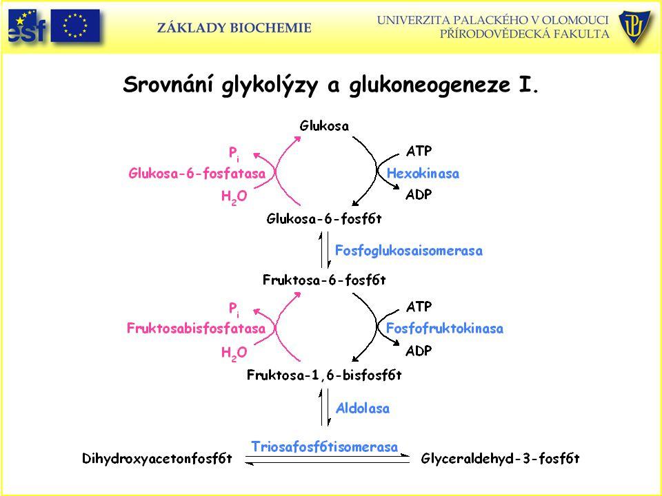 Srovnání glykolýzy a glukoneogeneze I.