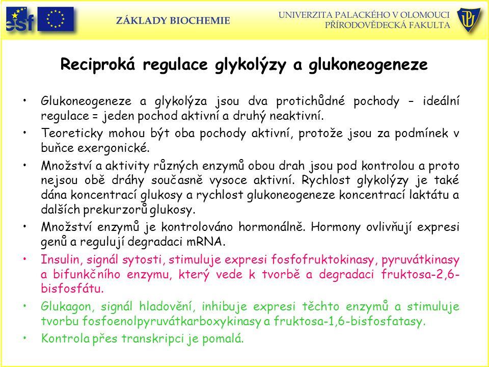 Reciproká regulace glykolýzy a glukoneogeneze Glukoneogeneze a glykolýza jsou dva protichůdné pochody – ideální regulace = jeden pochod aktivní a druh