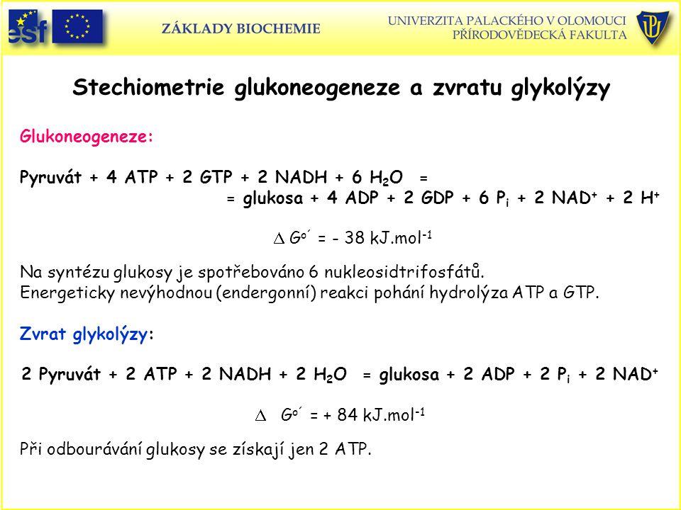Stechiometrie glukoneogeneze a zvratu glykolýzy Glukoneogeneze: Pyruvát + 4 ATP + 2 GTP + 2 NADH + 6 H 2 O = = glukosa + 4 ADP + 2 GDP + 6 P i + 2 NAD