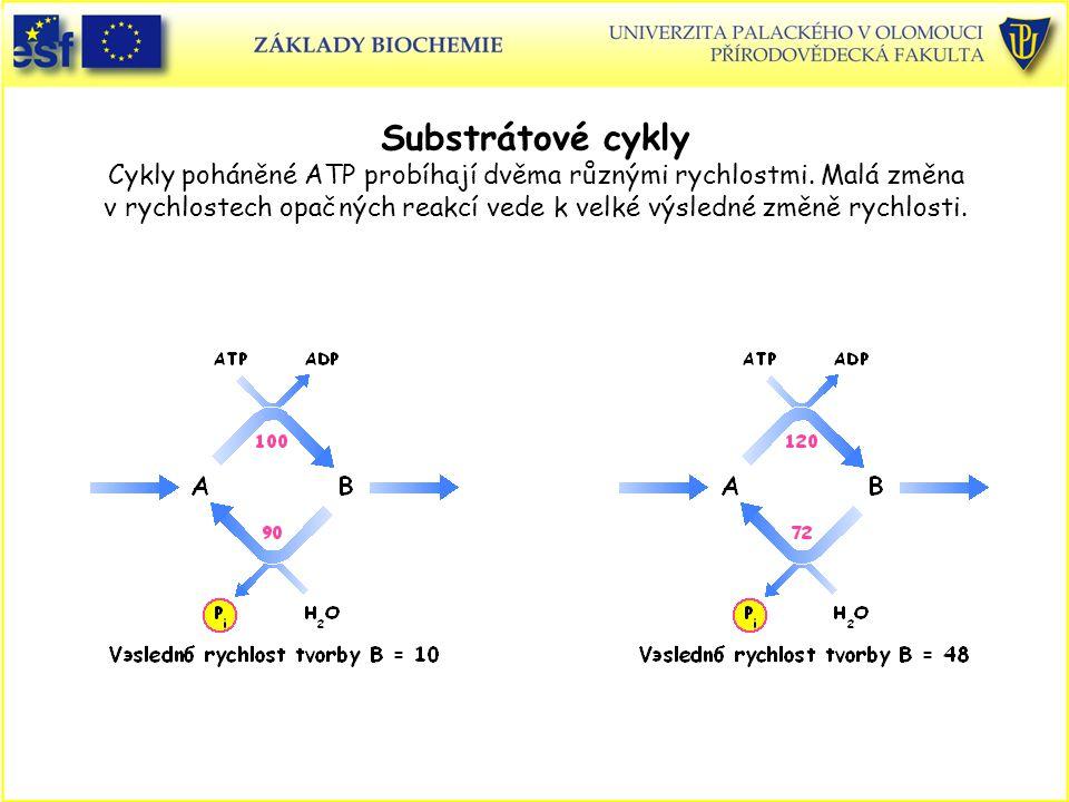 Substrátové cykly Cykly poháněné ATP probíhají dvěma různými rychlostmi. Malá změna v rychlostech opačných reakcí vede k velké výsledné změně rychlost