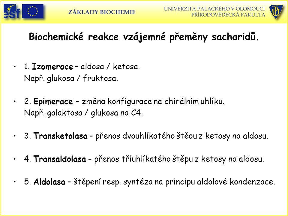 Biochemické reakce vzájemné přeměny sacharidů. 1. Izomerace – aldosa / ketosa. Např. glukosa / fruktosa. 2. Epimerace – změna konfigurace na chirálním