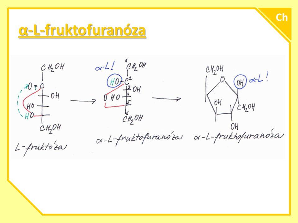 Zjištění získaných znalostí vytvořte cyklické vzorce: β-L-altropyranóza β-L-altropyranóza α-D-sorbofuranóza α-D-sorbofuranóza α-D-altrofuranóza α-D-altrofuranóza