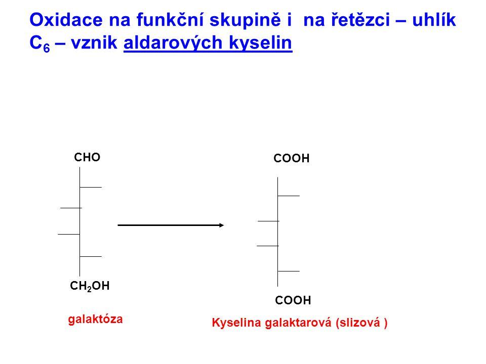 Oxidace na funkční skupině i na řetězci – uhlík C 6 – vznik aldarových kyselin COOH CH 2 OH CHO COOH galaktóza Kyselina galaktarová (slizová )
