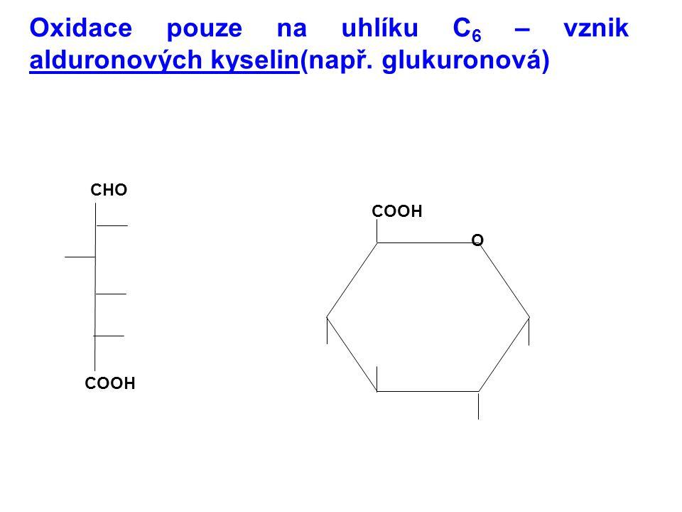 Oxidace pouze na uhlíku C 6 – vznik alduronových kyselin(např. glukuronová) CHO COOH O