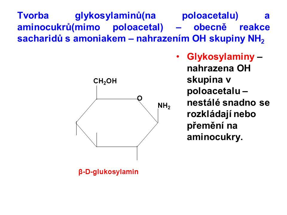 Tvorba glykosylaminů(na poloacetalu) a aminocukrů(mimo poloacetal) – obecně reakce sacharidů s amoniakem – nahrazením OH skupiny NH 2 Glykosylaminy –