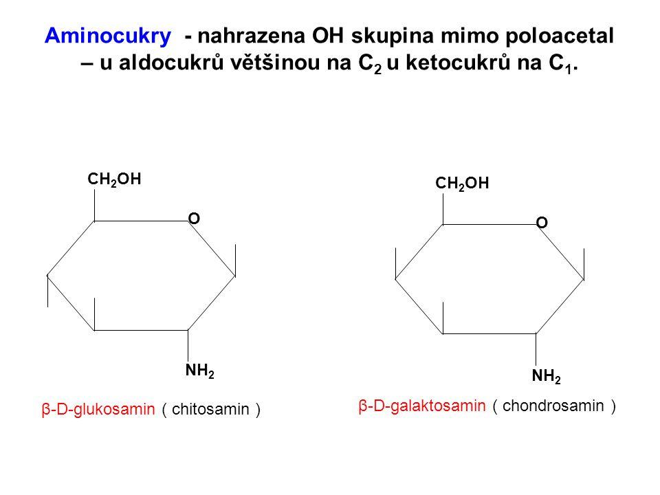 Aminocukry - nahrazena OH skupina mimo poloacetal – u aldocukrů většinou na C 2 u ketocukrů na C 1. CH 2 OH O NH 2 CH 2 OH O NH 2 β-D-glukosamin ( chi