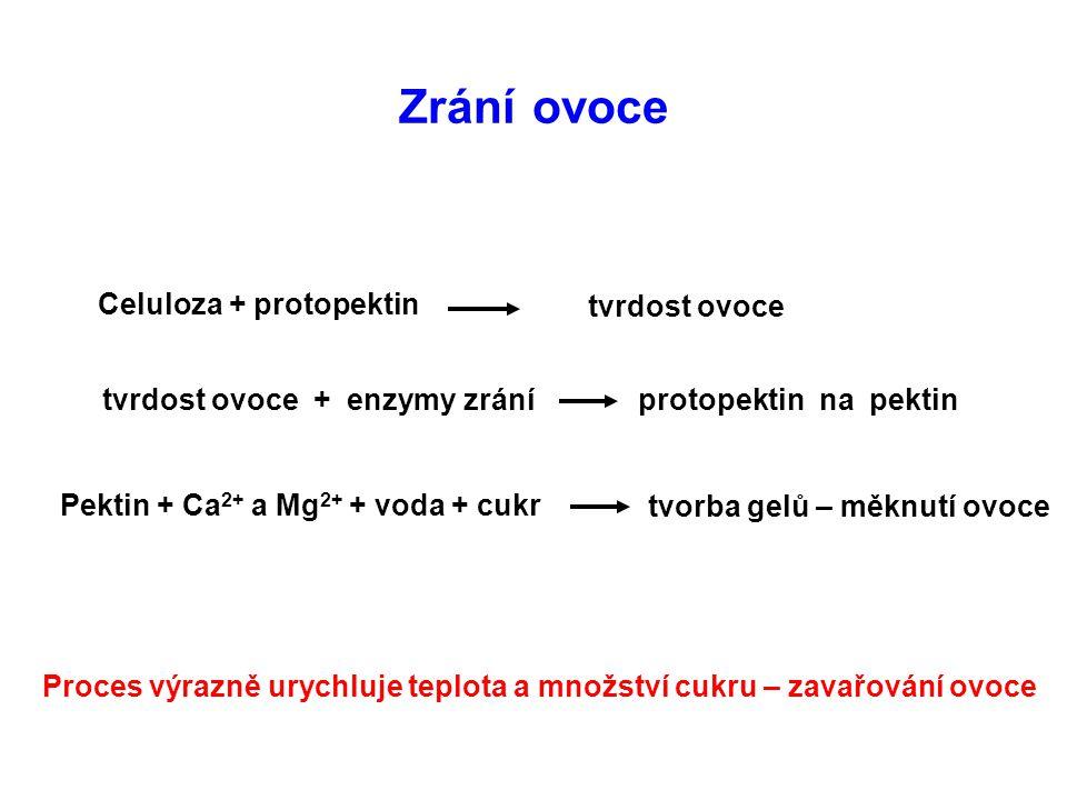 Zrání ovoce Celuloza + protopektin tvrdost ovoce tvrdost ovoce + enzymy zrání protopektin na pektin Pektin + Ca 2+ a Mg 2+ + voda + cukr tvorba gelů –