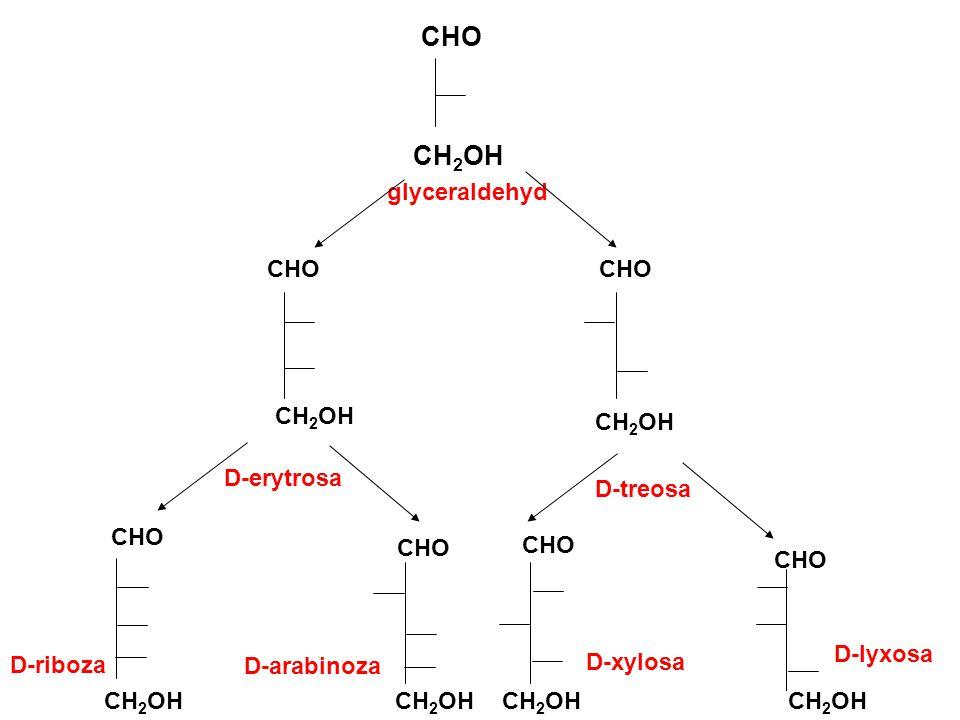 CHO CH 2 OH glyceraldehyd CHO CHO CHO CH 2 OH D-erytrosa D-treosa D-riboza D-arabinoza D-xylosa D-lyxosa CH 2 OH
