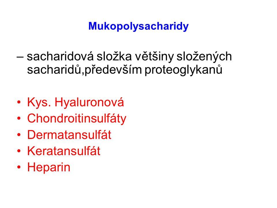 – sacharidová složka většiny složených sacharidů,především proteoglykanů Kys. Hyaluronová Chondroitinsulfáty Dermatansulfát Keratansulfát Heparin Muko