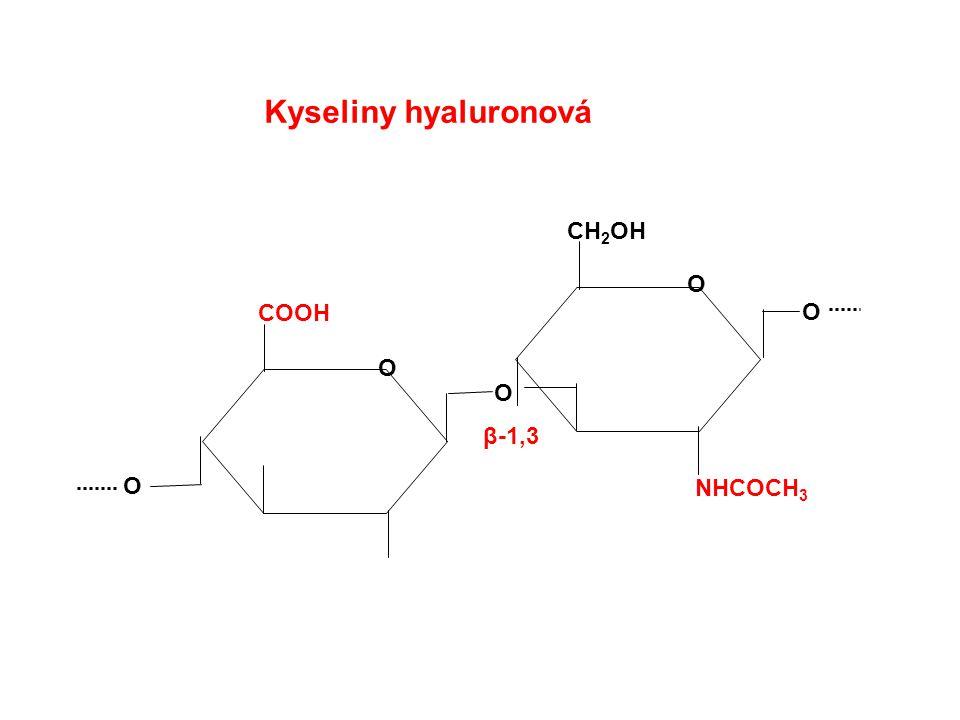 Kyseliny hyaluronová COOH O CH 2 OH O O O β-1,3 O NHCOCH 3