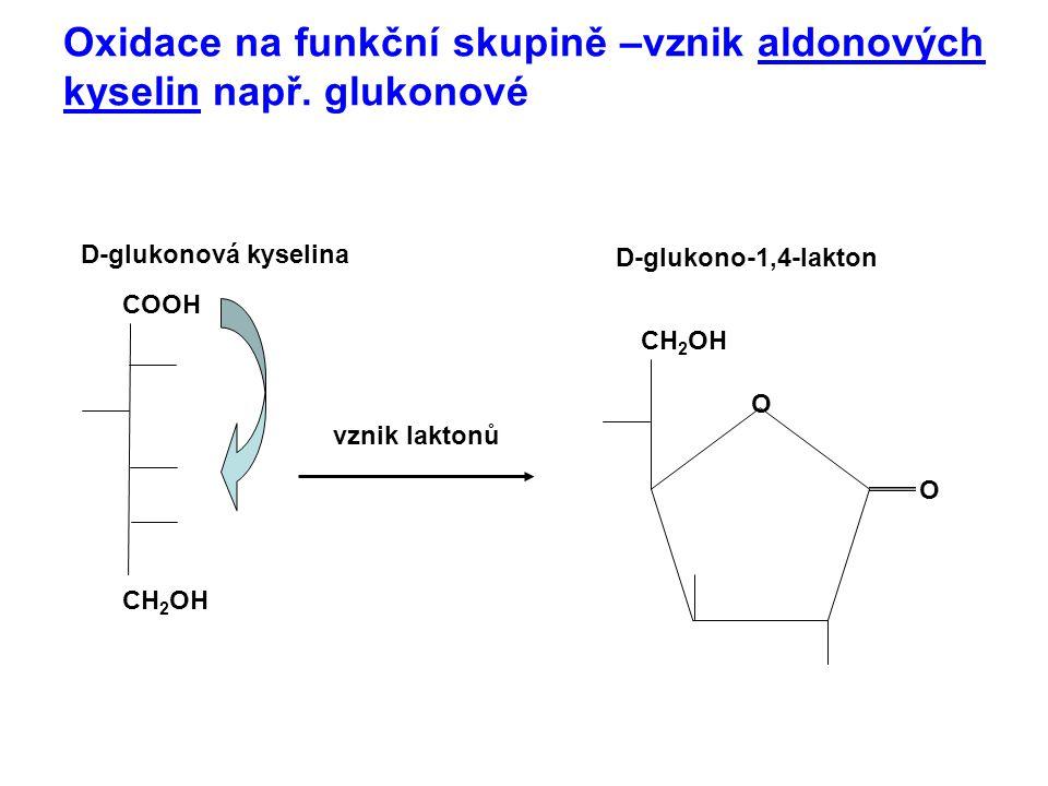 Oxidace na funkční skupině –vznik aldonových kyselin např. glukonové CH 2 OH O COOH vznik laktonů O D-glukonová kyselina D-glukono-1,4-lakton