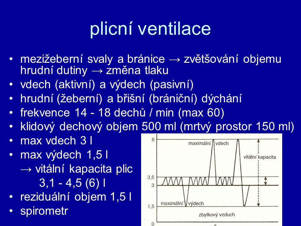 plicní ventilace mezižeberní svaly a bránice → zvětšování objemu hrudní dutiny → změna tlaku vdech (aktivní) a výdech (pasivní) hrudní (žeberní) a břišní (brániční) dýchání frekvence 14 - 18 dechů / min (max 60) klidový dechový objem 500 ml (mrtvý prostor 150 ml) max vdech 3 l max výdech 1,5 l → vitální kapacita plic 3,1 - 4,5 (6) l reziduální objem 1,5 l spirometr