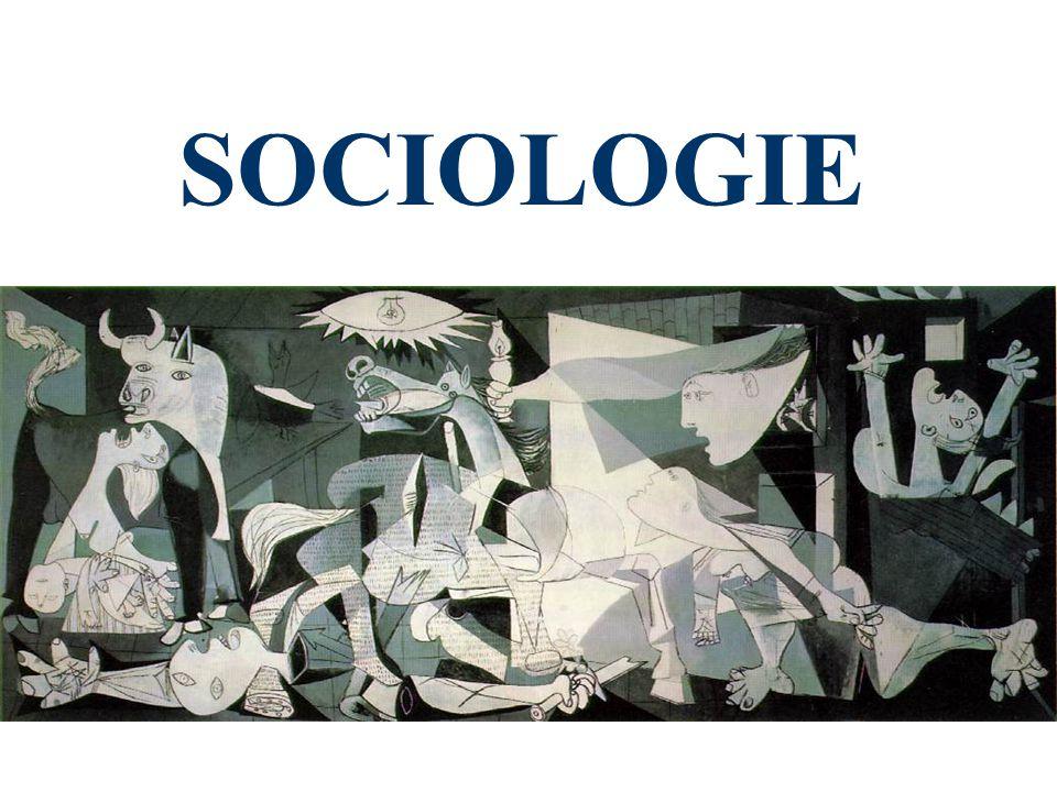 Vznik sociologie Sociologie jako akademická disciplína se poprvé objevuje v roce 1892 na univerzitě v Chicagu Sociologie vzniká jako produkt společenské krize ve druhé polovině 19.