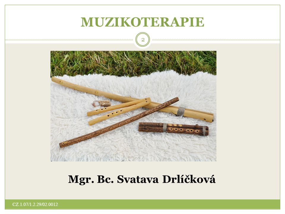 MUZIKOTERAPIE Mgr. Bc. Svatava Drlíčková 2 CZ.1.07/1.2.29/02.0012