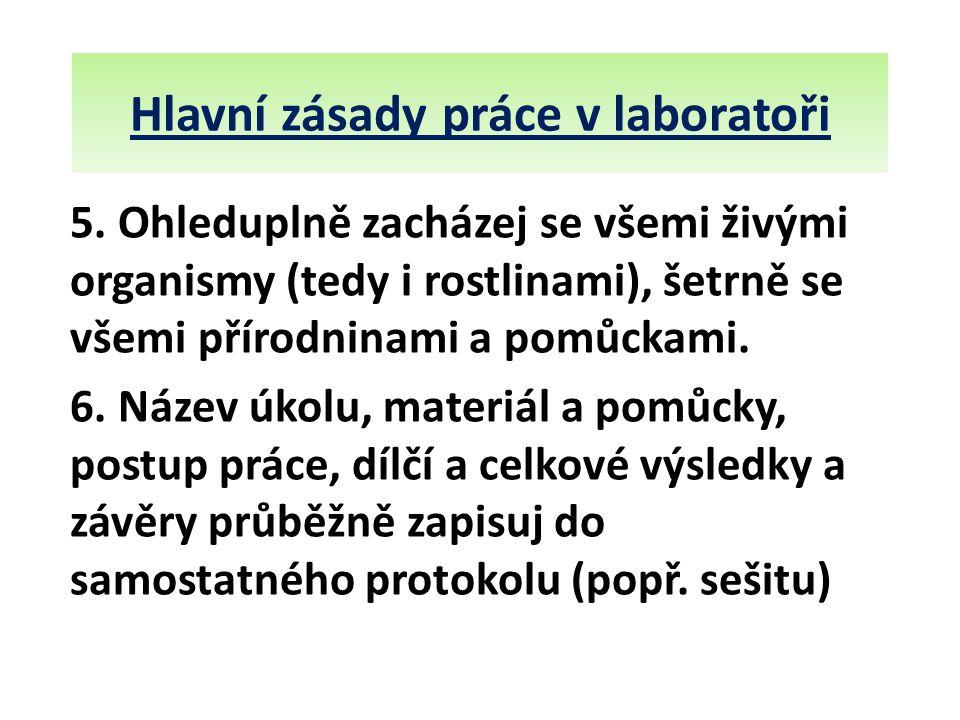 Hlavní zásady práce v laboratoři 5.