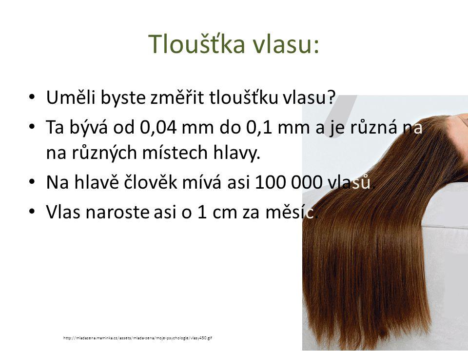 Tloušťka vlasu: Uměli byste změřit tloušťku vlasu.