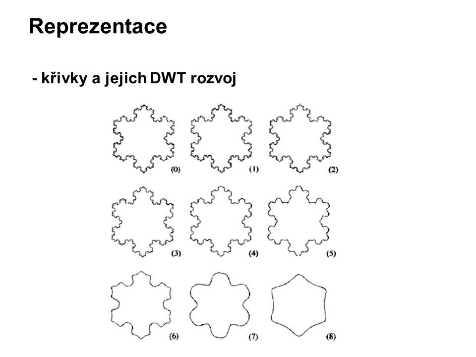 Reprezentace - křivky a jejich DWT rozvoj