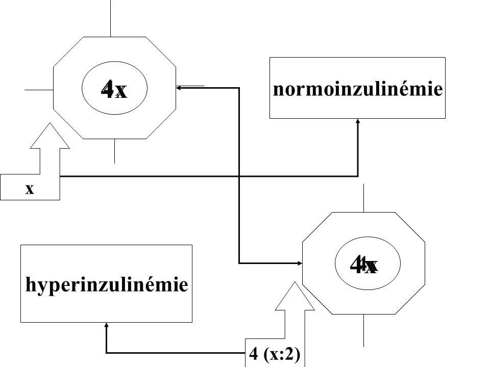 x 4 (x:2) 4x hyperinzulinémie normoinzulinémie