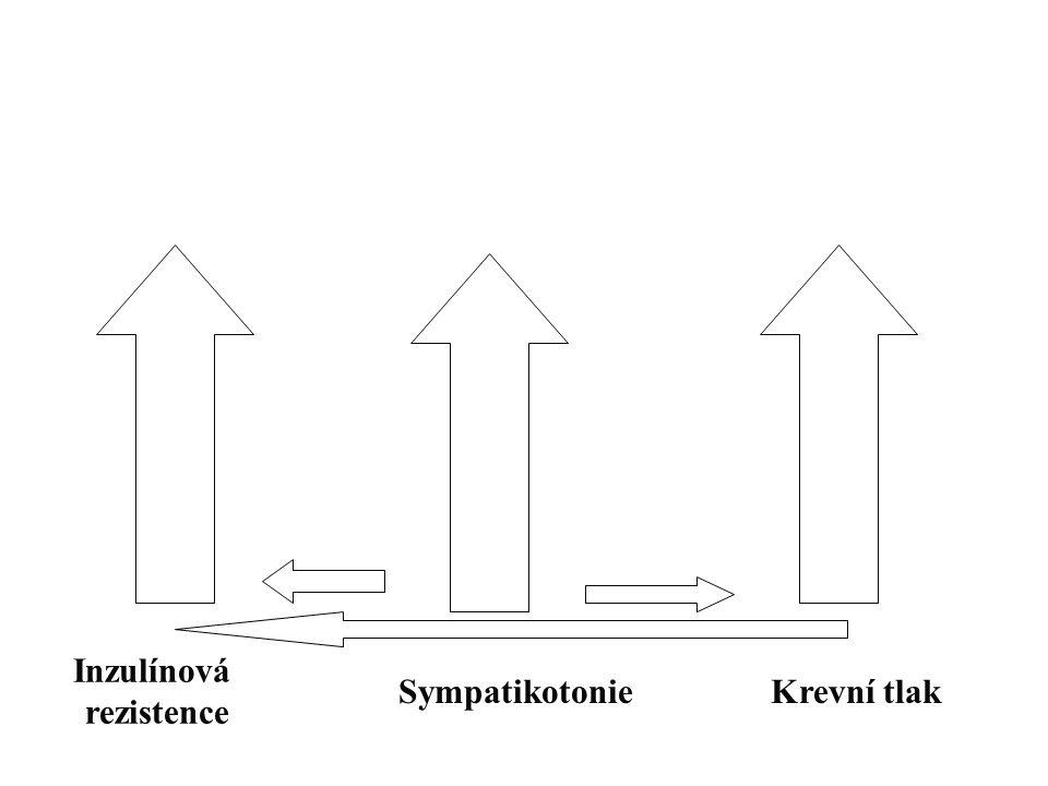 Inzulínová rezistence SympatikotonieKrevní tlak