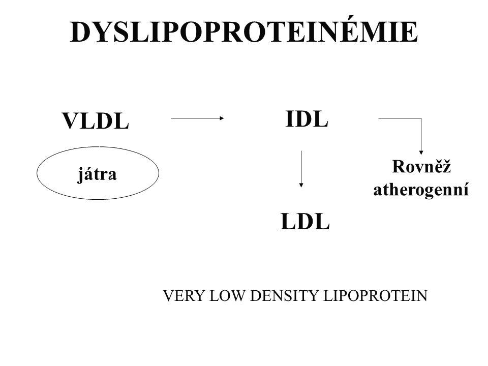 DYSLIPOPROTEINÉMIE VLDL IDL LDL játra Rovněž atherogenní VERY LOW DENSITY LIPOPROTEIN