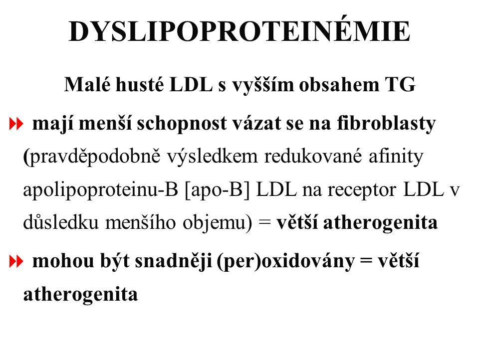 DYSLIPOPROTEINÉMIE Malé husté LDL s vyšším obsahem TG  mají menší schopnost vázat se na fibroblasty (pravděpodobně výsledkem redukované afinity apoli