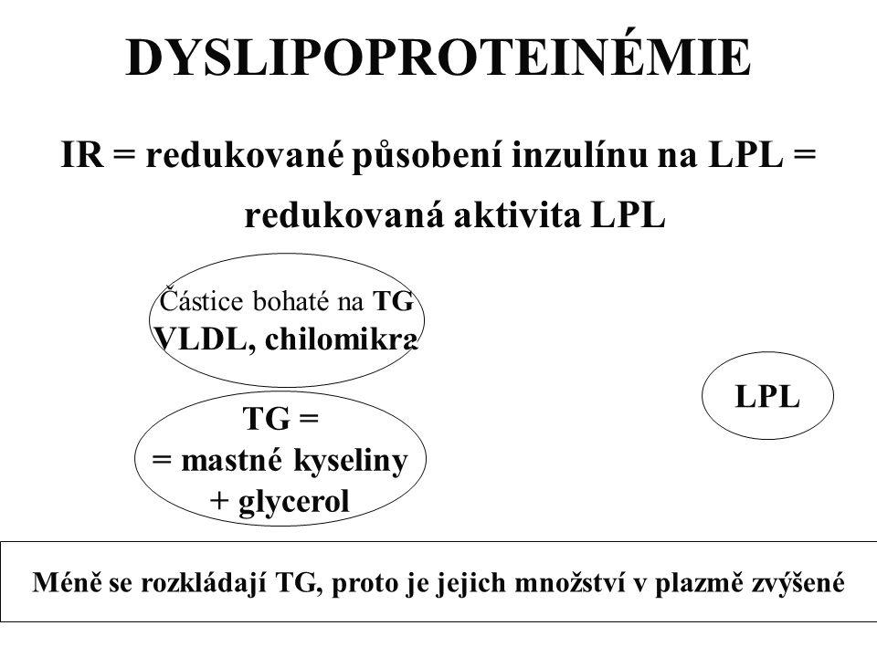 DYSLIPOPROTEINÉMIE IR = redukované působení inzulínu na LPL = redukovaná aktivita LPL Částice bohaté na TG VLDL, chilomikra LPL TG = = mastné kyseliny