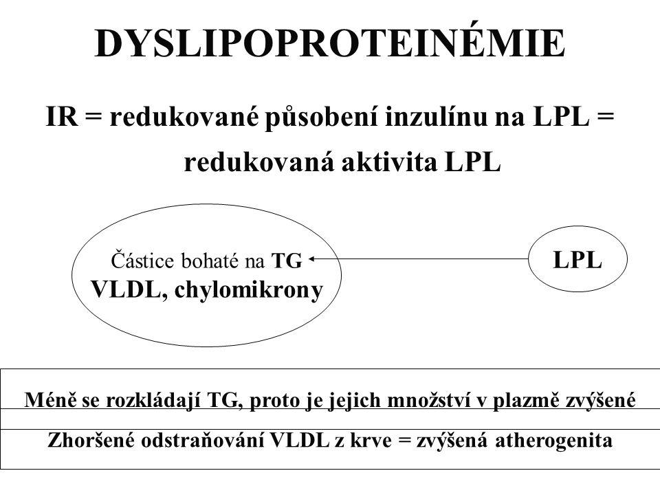 DYSLIPOPROTEINÉMIE IR = redukované působení inzulínu na LPL = redukovaná aktivita LPL Částice bohaté na TG VLDL, chylomikrony LPL Méně se rozkládají T