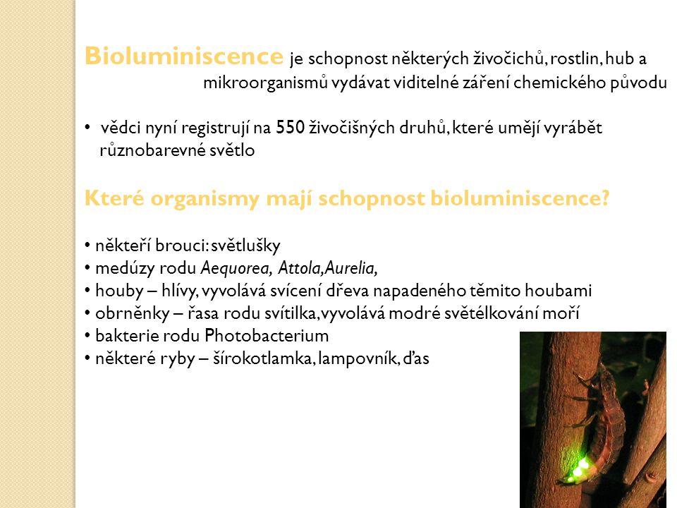 Chemická podstata bioluminiscence mechanismus produkce světla je založen na tom, že buňky produkují tukovitou látku – luciferin a enzym - luciferázu, která za přítomnosti kyslíku a energetického zdroje ve formě ATP zprostředkovává oxidaci luciferinu na - oxyluciferin, oxid uhličitý a chladné krátkovlnné světlo - bílé, modravé, zelenavé, červené nebo žluté rovnice reakce se dá zapsat takto: luciferin + kyslík → oxyluciferin + světlo existuje řada způsobů aktivace: v medúzách je spouštěcím iontem vápník účinnost: při této reakci se vyzařuje až 96 % světla a jen 4 % tepla, je tedy velmi efektivní