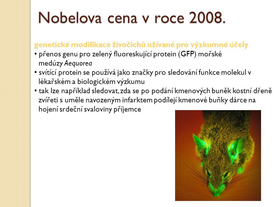 genetické modifikace živočichů užívané pro výzkumné účely přenos genu pro zelený fluoreskující protein (GFP) mořské medúzy Aequorea svítící protein se používá jako značky pro sledování funkce molekul v lékařském a biologickém výzkumu tak lze například sledovat, zda se po podání kmenových buněk kostní dřeně zvířeti s uměle navozeným infarktem podílejí kmenové buňky dárce na hojení srdeční svaloviny příjemce Nobelova cena v roce 2008.