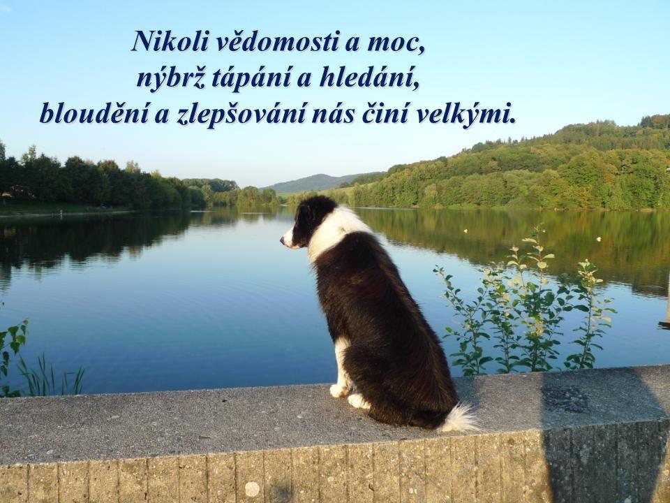 Devět desetin moudrosti je - být moudrý včas.