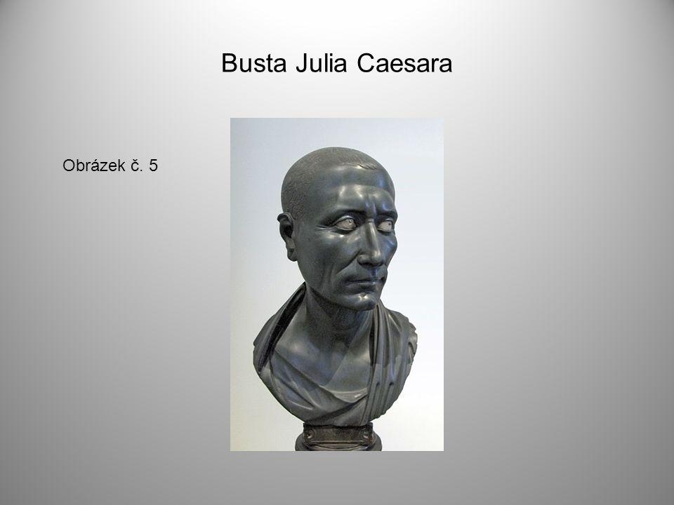Busta Julia Caesara Obrázek č. 5