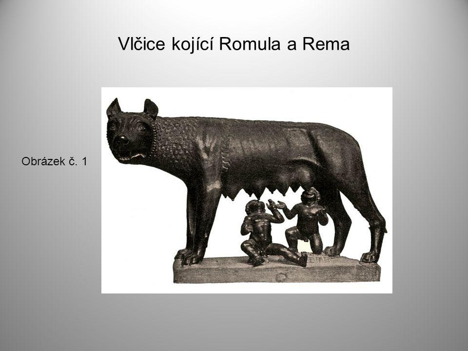 Vlčice kojící Romula a Rema Obrázek č. 1