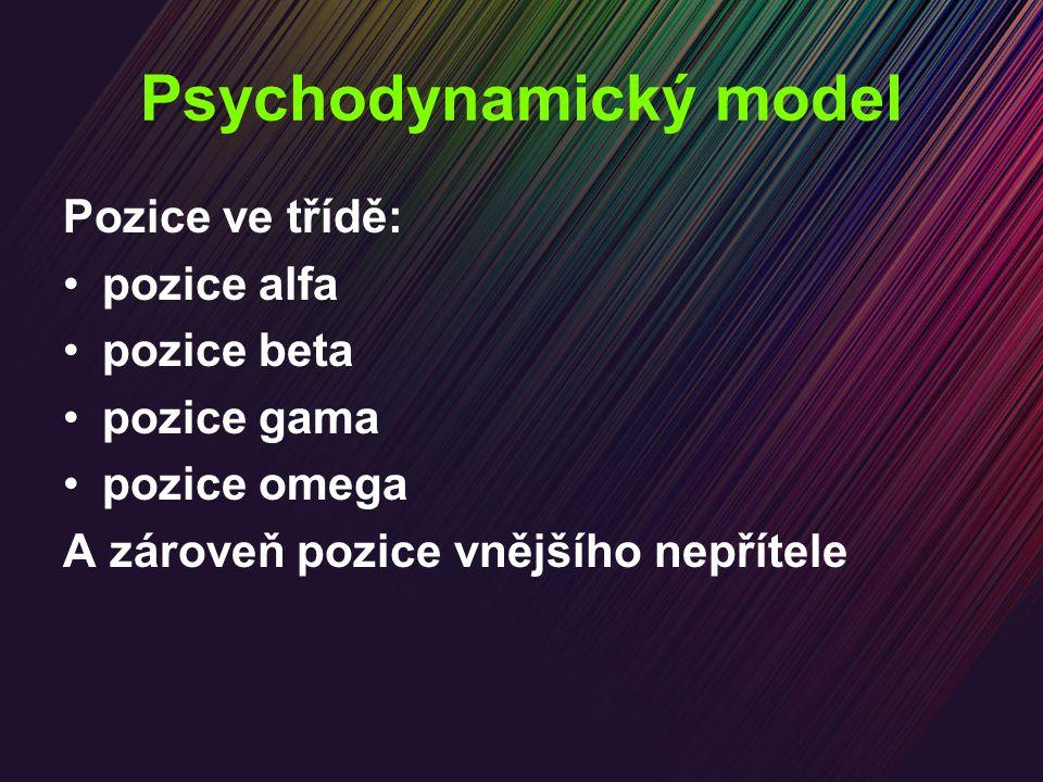 Psychodynamický model Pozice ve třídě: pozice alfa pozice beta pozice gama pozice omega A zároveň pozice vnějšího nepřítele