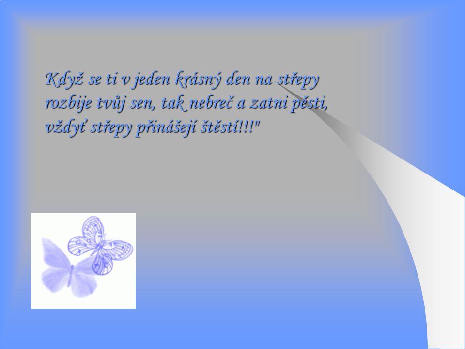 Když se ti v jeden krásný den na střepy rozbije tvůj sen, tak nebreč a zatni pěsti, vždyť střepy přinášejí štěstí!!!